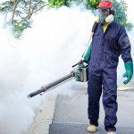 Jasa Pembasmi Nyamuk di Jakarta