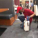 9 Cara Efektif Membasmi Serangga Di Rumah