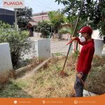 Jasa Pembasmi Rayap di Rangkasbitung Banten