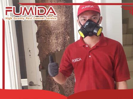 Jasa Anti Rayap Pest Control Pembasmi Hama Jakarta  46a3353e7d