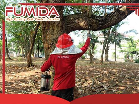 Jasa Pembasmi Tawon di Tangerang - Fumida