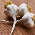 Ini 7 Tanaman Pengusir Kecoa yang Ada di Sekitar Kita