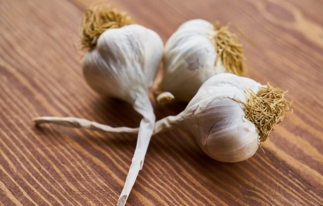 Bawang putih sebagai tanaman pengusir kecoa