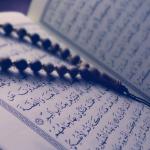 Cara Mengusir Cicak dalam Islam Secara Alami dan Doa
