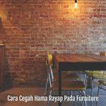 Cara Cegah Hama Rayap Pada Furniture