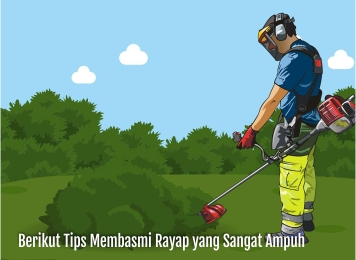tips membasmi rayap