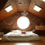 5 Mudah Cara Mengusir Cicak di Plafon Rumah dengan Praktis