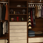 10 Serangga Perusak Pakaian dan Cara Membasminya Cepat
