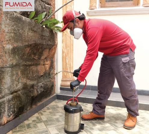 Gambar 3 - Cara membasmi kecoa yang aman