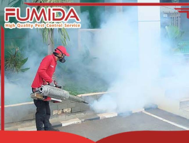 Gambar 3 - Cara membasmi nyamuk dengan cepat dan tuntas