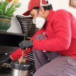 5 Alasan Memilih Jasa FUMIDA Untuk Basmi Serangga Di Rumah