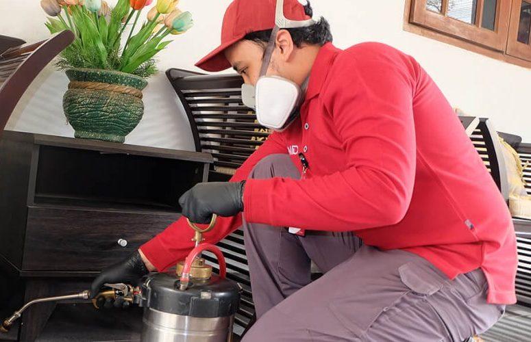 Alasan Memilih Jasa FUMIDA Untuk Basmi Serangga Di Rumah